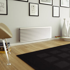 Attractive radiator with mirror